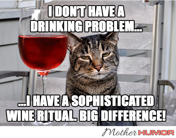 Funny Cat Drinking Meme : Wine memes that pair perfectly with your wine mother humor